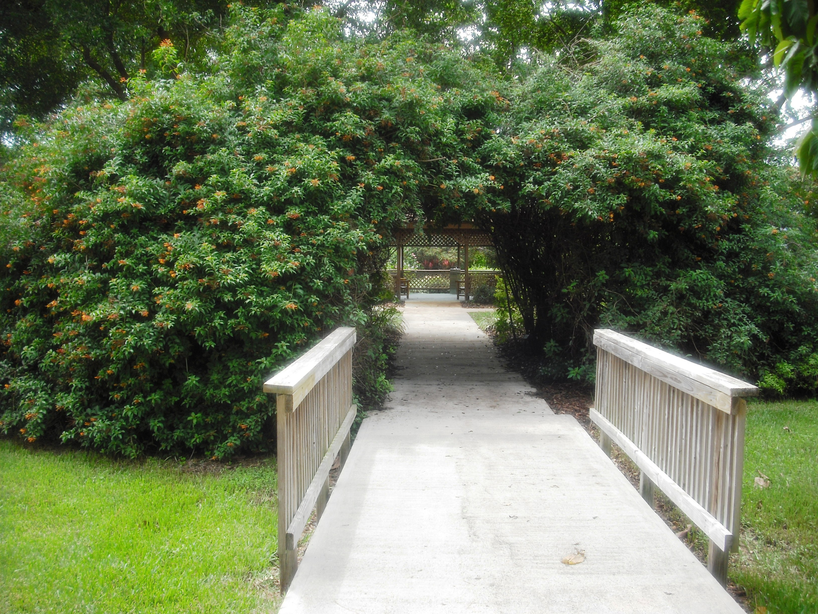Mounts botanical garden west palm beach parks - West palm beach botanical garden ...
