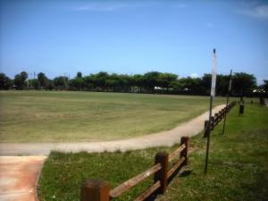 South Olive Park 4-26-2013 022