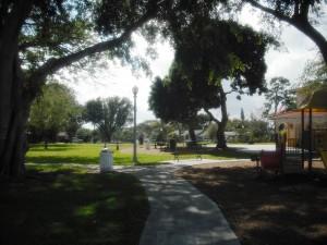 Vedado Park 2-20-2013 029