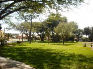 Vedado Park 2-20-2013 032