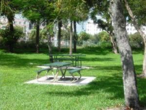 Coleman Park 025