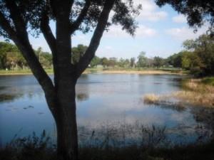 Dreher Park North 036