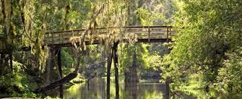 bridge fl state park