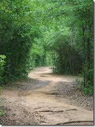 florida state park path