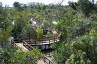 Green Cay boardwalk
