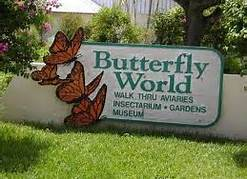 entry sign butterfly world