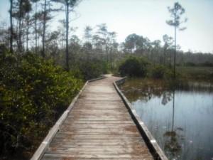 apoxee-park-boardwalk