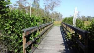 apoxee-trail-bridge