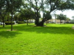 Mary Brandon Park WPB 029