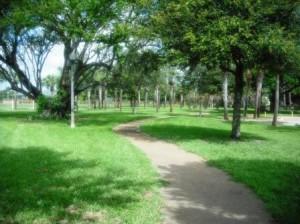 Mary Brandon Park WPB 033