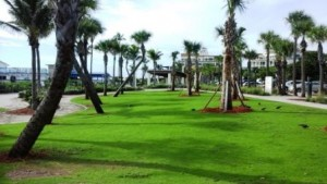 lake-worth-beach-green-space