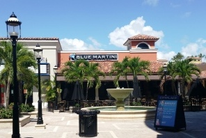 Blue Martini WPB