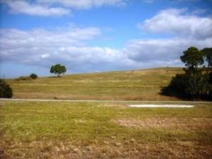 Dyer Park 002
