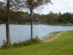 Dyer Park 036