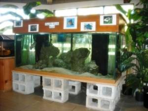 Exhibits Okeeheelee Center