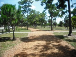 Haverhill Park June 2015 032