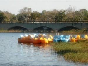 Kayaking at Okeeheelee