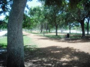 Okeeheelee Park June 2015 025