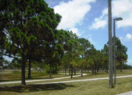 Okeeheelee Park June 2015 028