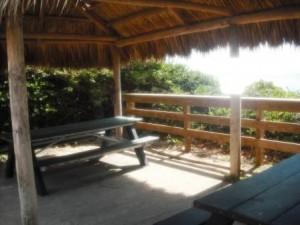 Phipps Ocean Park June 2015 011