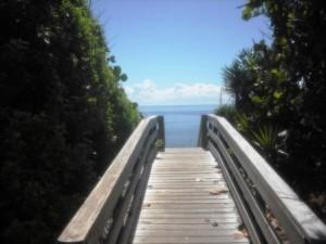 Phipps Ocean Park June 2015 013