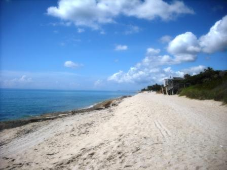 Phipps Ocean Park June 2015 016