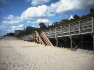 Phipps Ocean Park June 2015 018