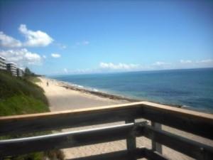 Phipps Ocean Park June 2015 020