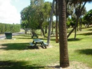 Phipps Ocean Park June 2015 049
