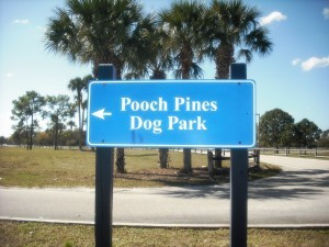 Pooch Pine Dog Park sign