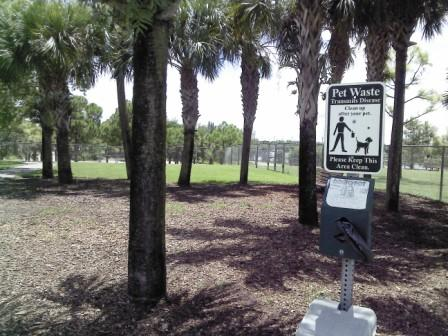 Pooch Pines Dog Park Shaded Area