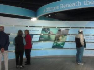 Manatee Lagoon Discovery Center Indoor Exhibits