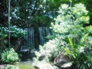 Morikami Museum 2016 Waterfall