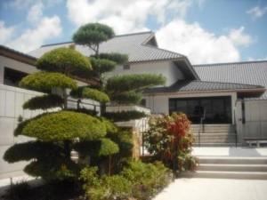 Morikami Museum manicured trees