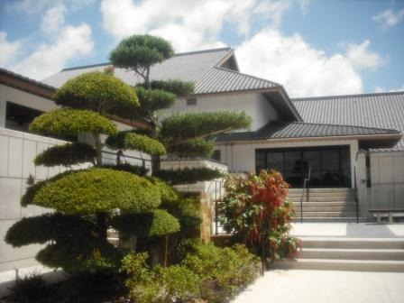 Morikami Museum manicured trees