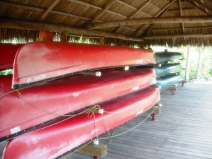 Grassy Waters Canoes for tours