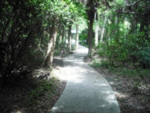 Blazing Star Nature Trail Frenchman Forest