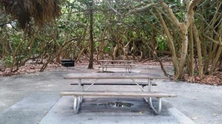 ocean-reef-park-picnic-benches