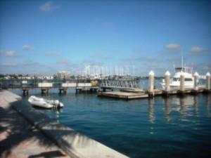 phil-foster-park-boat-docks
