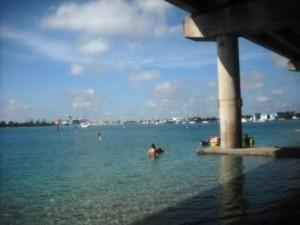 phil-foster-park-snorkeling