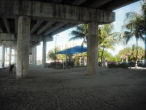 phil-foster-park-under-bridge