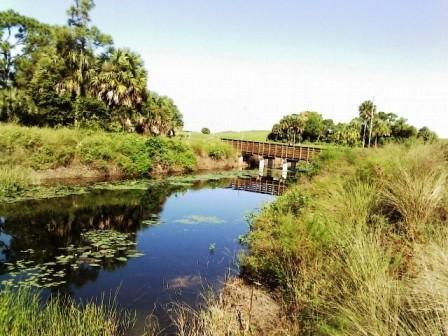 winding-waters-bridge-view