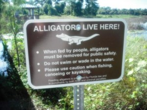 winding-waters-wpb-alligator-sign