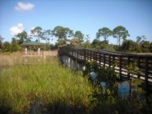winding-waters-wpb-observation-bridge-platform