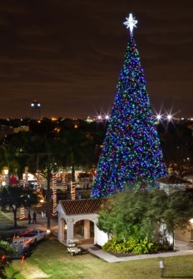 boynton-beach-christmas-tree-lighting & boynton-beach-christmas-tree-lighting | West Palm Beach Parks