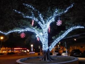 lake-worth-christmas-lights