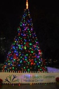 palm-beach-gardens-christmas-tree