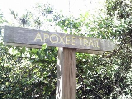 apoxee-trail-sign