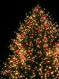 christmas-tree-lights