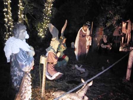 hoffmans-nativity-scene